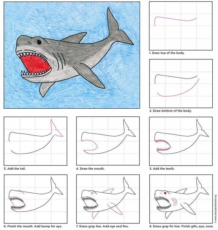 "The word Megalodon means ""Big Tooth"". How big you might ask? How about 7″ long!  These were the largest and most dangerous killer sharks to ever live on earth. • View and download Megalodon Tutorial"