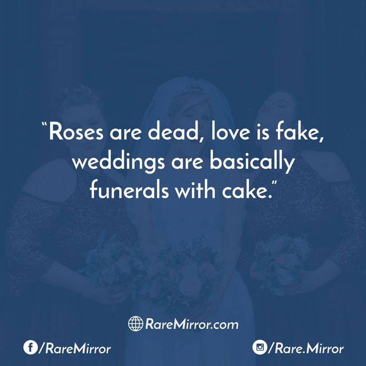 #raremirror #raremirrorquotes #quotes #like4like #likeforlike #likeforfollow #like4follow #follow #followforfollow #funny #comedy #sarcasm #funnyquotes #comedyquotes #sarcasmquotes #roses #dead #love #fake #weddings #basically #funerals #with #cake