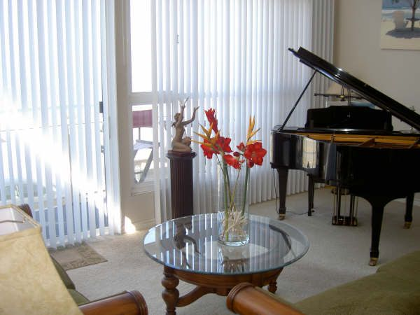 Concert pianist with her piano in penthouse unit with 35 mile view from PV to Ventura