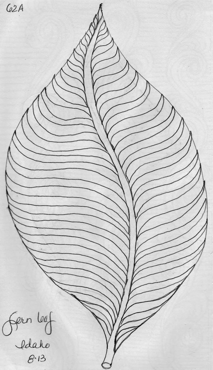 best 25 leaf design ideas on pinterest cute handwriting silver