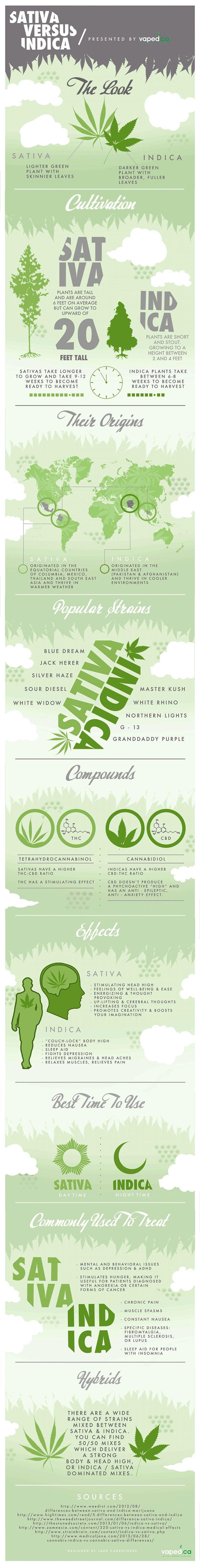 Sativa vs Indica Marijuana Infographic