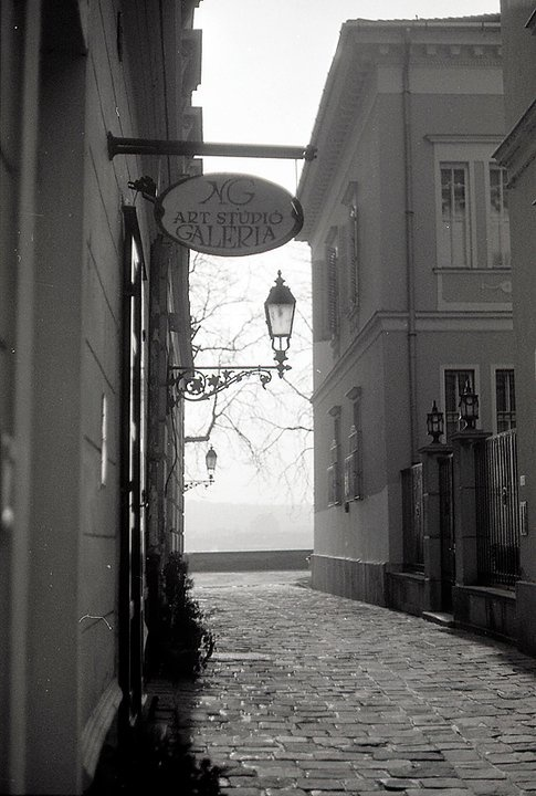 altrev:  Hollósi Soff Photography