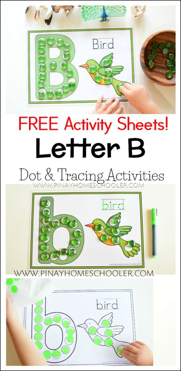 FREE Letter B Dot and Tracing Activity Sheets