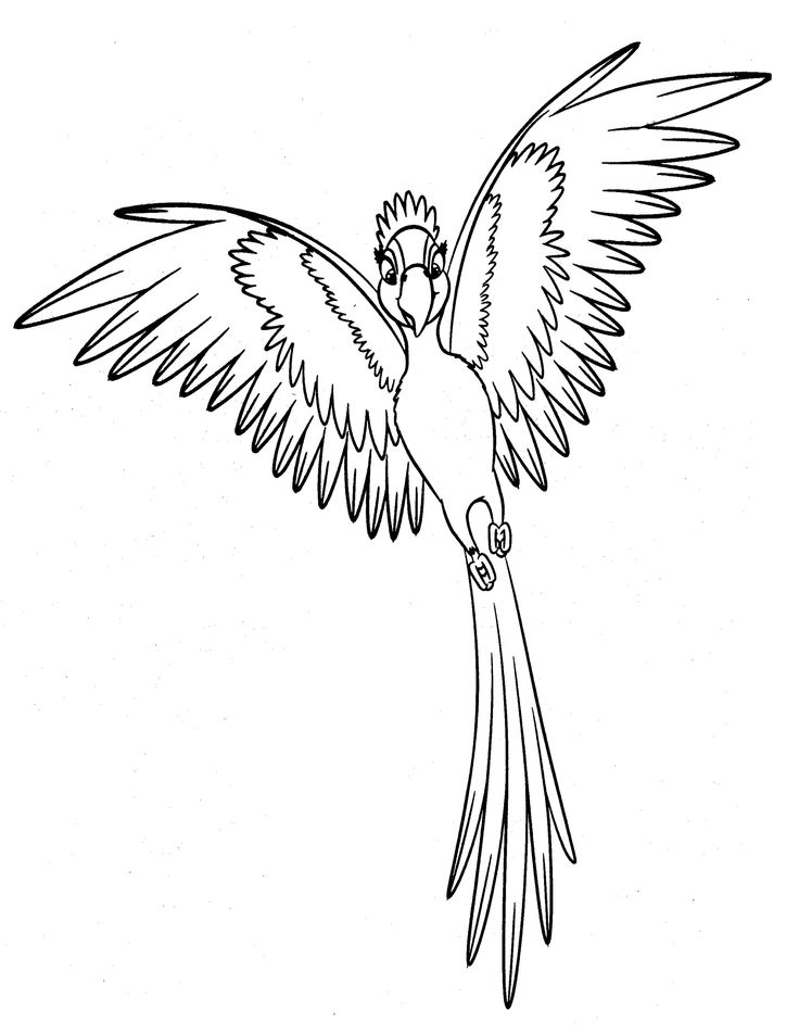 Printable RIO Coloring Pages
