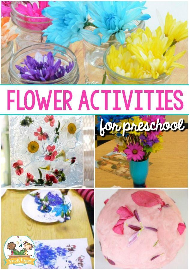 Flower Activities for Preschool. A list of the best flower ideas and activities for a spring or flower theme in your preschool or kindergarten classroom. #preschool