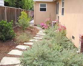 backyard landscaping ideas 4999 best california gardens images on 31082