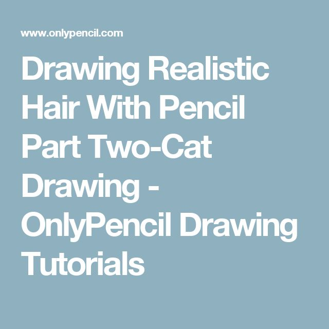 Drawing Realistic Hair With Pencil Part Two-Cat Drawing - OnlyPencil Drawing Tutorials