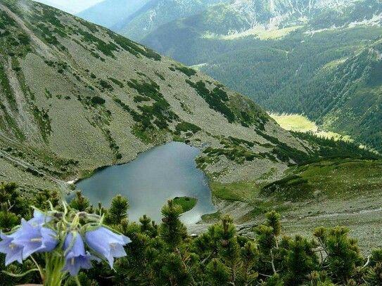 Tăul Țapului, Retezat National Park