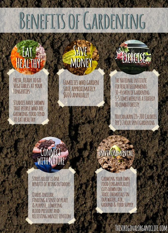 52 best images about portland urban gardening on pinterest - Organic gardening practical tips ...