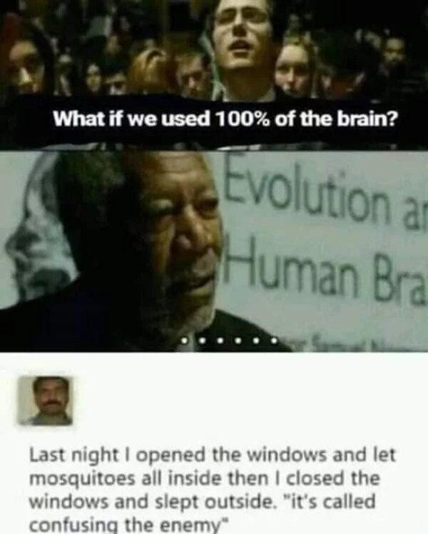 39 People Who Have Life All Figured Out Really Funny Memes Funny Relatable Memes Really Funny