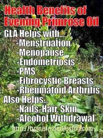 Benefits of evening primrose oil// I started to take this just a little bit ago! Cool that there are soo many things it helps!