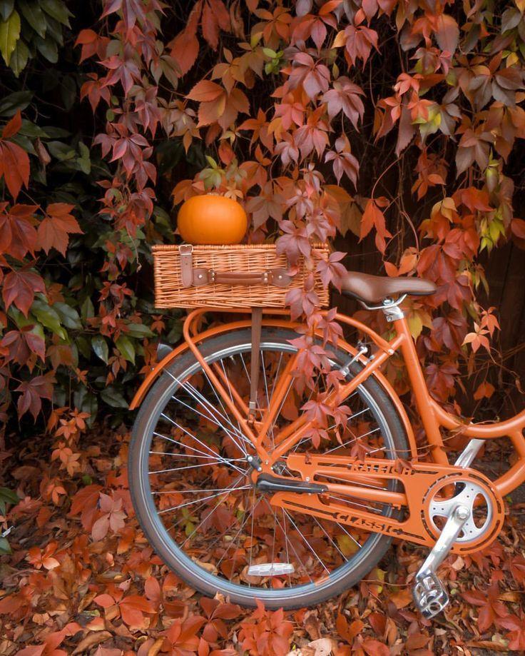Herbst #Malerei #In #Farben #Das #Sommer #Hat