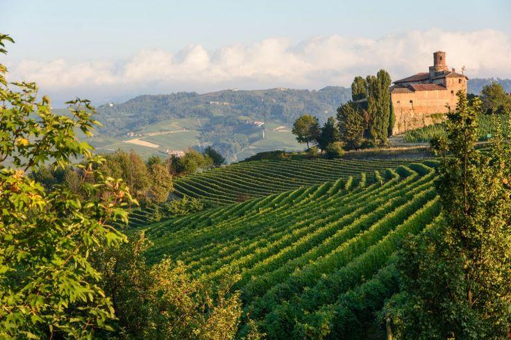 Weinregion Piemont, perfekt für romantische ländliche Hochzeiten rund um den Wein in Norditalien