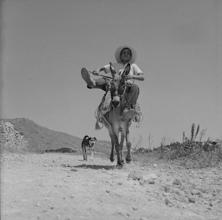 Photo by Zacharias Stellas. The Benaki Museum Photographic Archive
