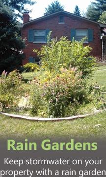 37 best Rain Gardens images on Pinterest Rain garden Dry creek