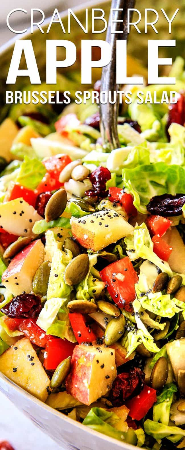 Wonderfully crunchy, satisfying Cranberry Apple Shaved Brussels Sprouts Salad is a perfect harmony of flavor and texture all doused in to-live-for bright and refreshing Lemon Poppy Seed Dressing! It i