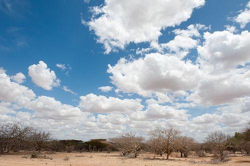 http://adesoafrica.org/  The beautiful Kenyan sky  © Jennifer Huxta