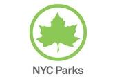 Volunteer in NYC