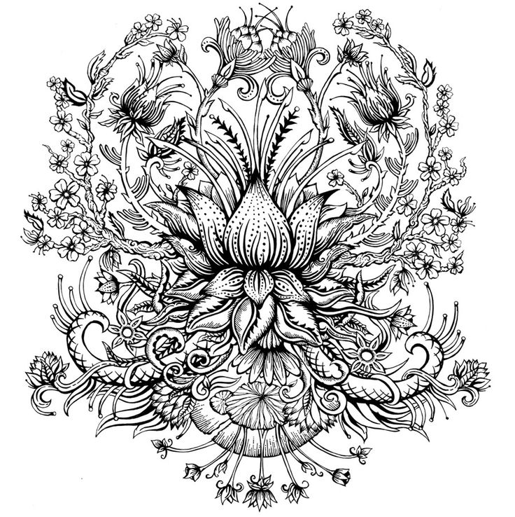 35 Beautiful Flower Drawings and Realistic Color Pencil Drawings   Read full article: http://webneel.com/flower-drawings   more http://webneel.com/drawings   Follow us www.pinterest.com/webneel