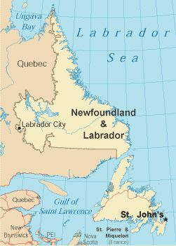 newfoundland and labrador bbw personals Newfoundland and labrador did you know there are fun-seeking, attractive   newfoundland and labrador chat - meet singles from newfoundland and  labrador  newfoundland and labrador bbw | newfoundland and labrador  singles.