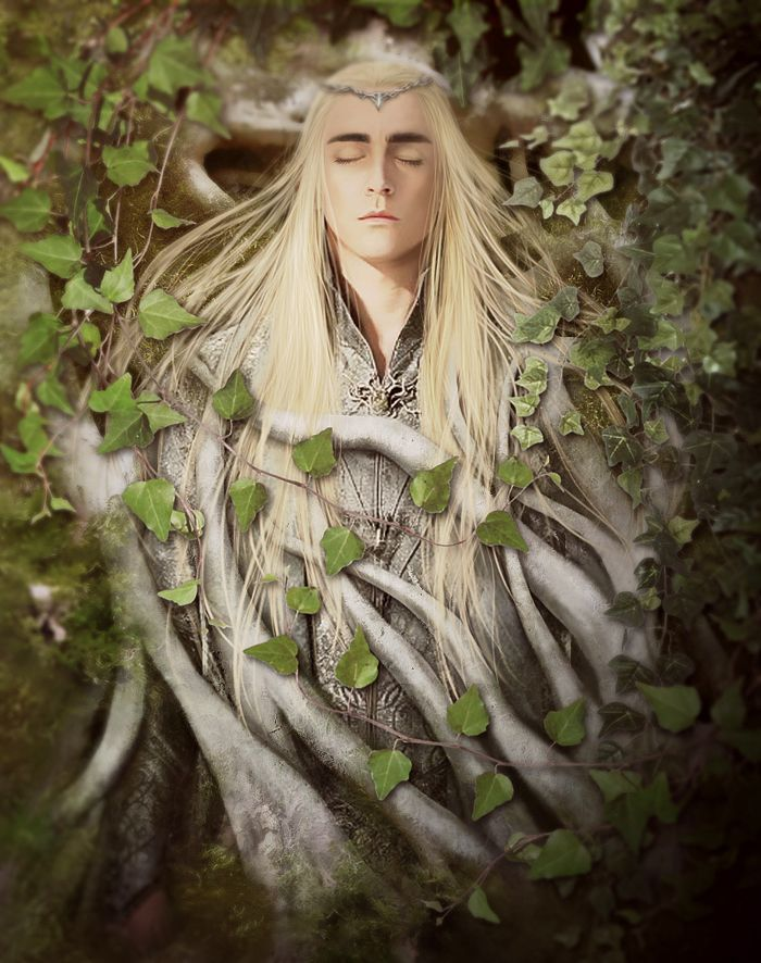 446 best images about Elves and Half Elves on Pinterest ...