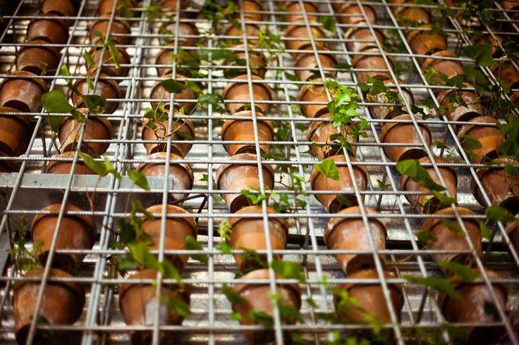 Duurzaamheid en eerlijk voedsel in The Green House   | roomed.nl