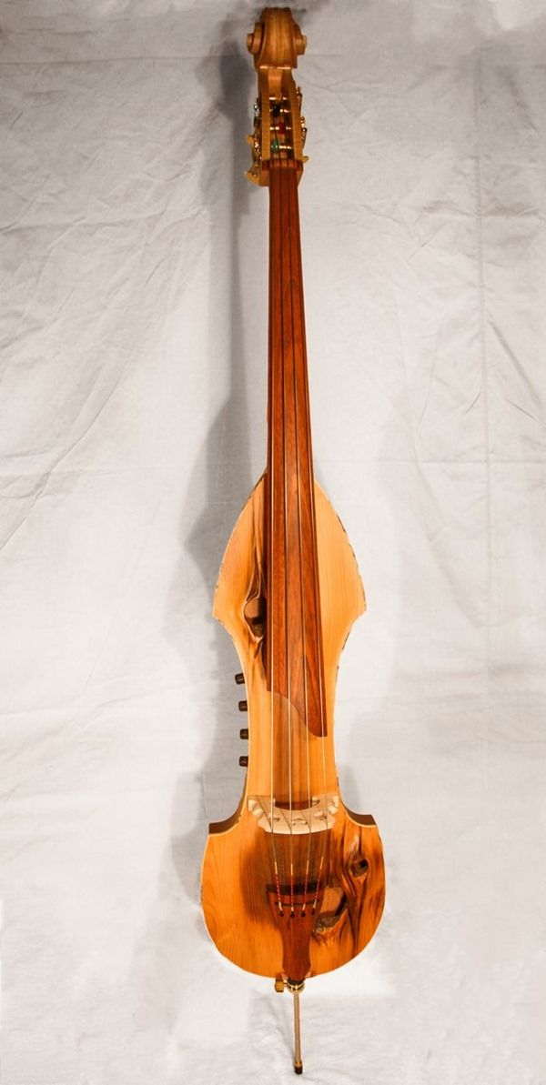 17 Best Images About Electric Upright Bass On Pinterest