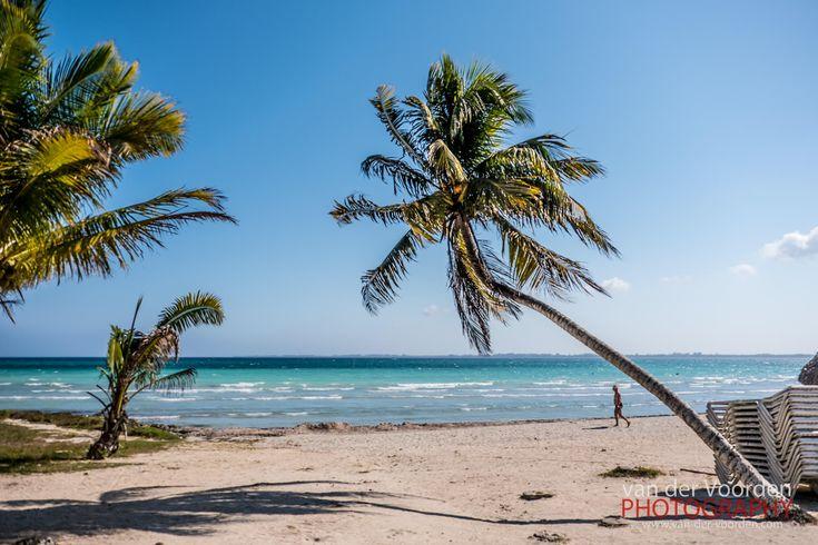 2016 Mexiko & Kuba Rundreise: Playa Larga