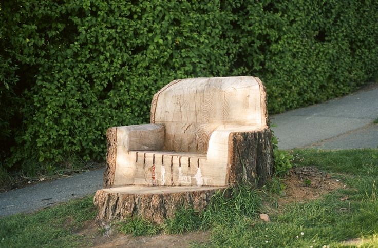 Tree trunk chairWooden Chairs, Gardens Ideas, Trees Trunks, Tree Trunks, Jennil Marigomen, Random Pin, Trees Stumps, Crafty Ideas, Trunks Chairs