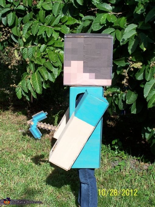 Irene: My 10 year old son LOVES playing the game Minecraft, so of course he wanted to be Steve for Halloween this year! Luckily, Dad has access to lots of heavy...