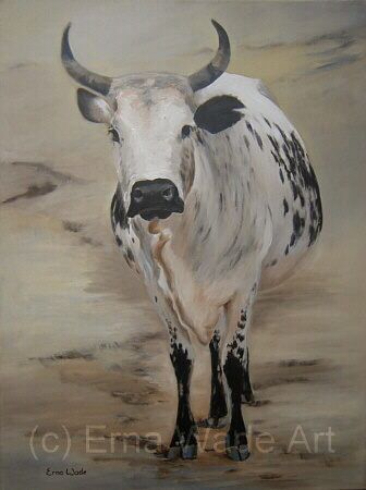 """Nguni 23.Oil on Canvas. 450x600mm (17x23""""). $260. SOLD"""