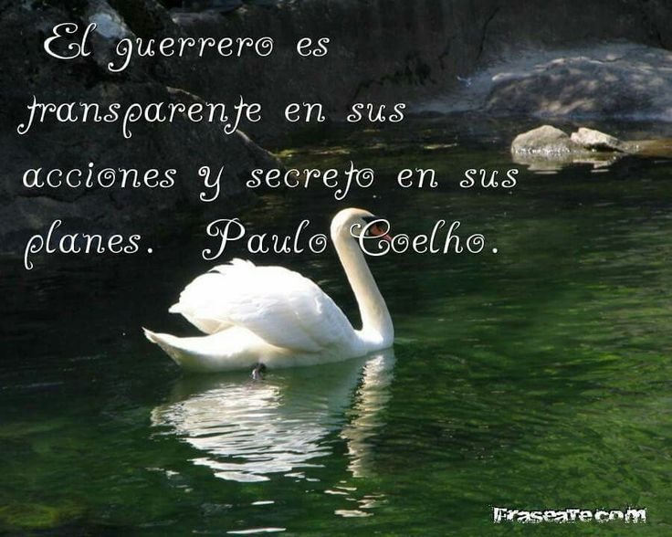 580 Best Paulo Coelho. Images On Pinterest