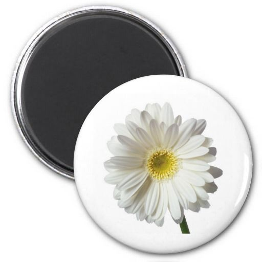 Single Daisy Fridge Magnet just $4.10 Pretty on your refrigerator or makes a great gift!