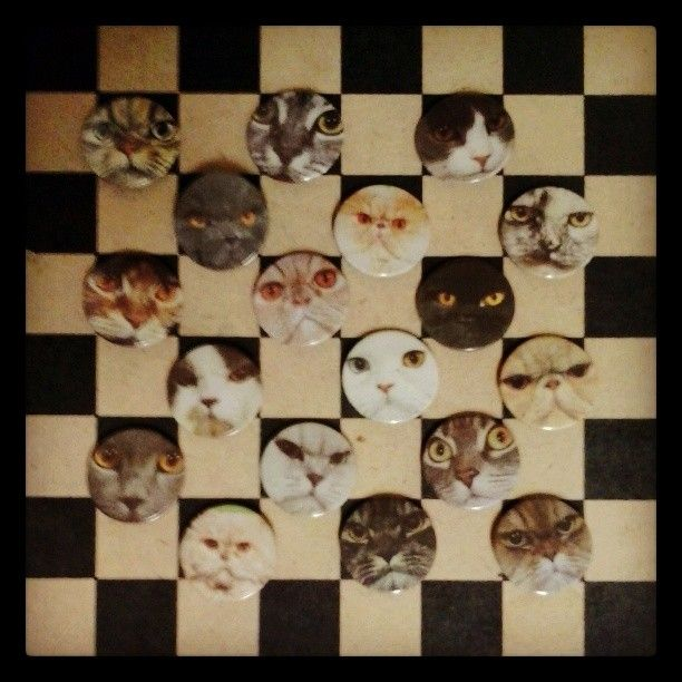 Ugly cat pins / info@brzydko.com #cats #pins #buttons #crazycatlady