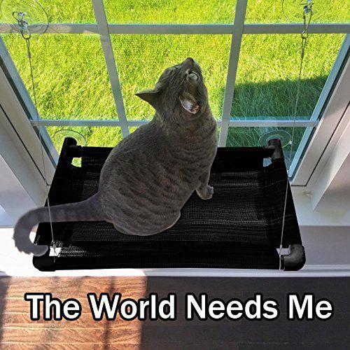 17 Best ideas about Cat Hammock on Pinterest