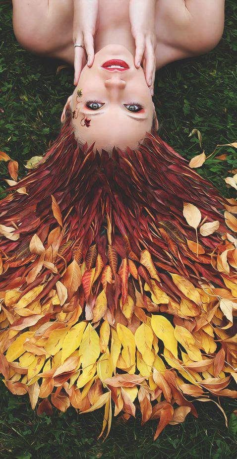 woodland | queen
