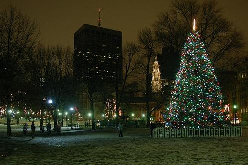 Boston Tree Lighting at Boston Common