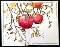 Brenda Swenson Forbidden Fruit Watercolor Technique from Daniel Smith Art Supplies