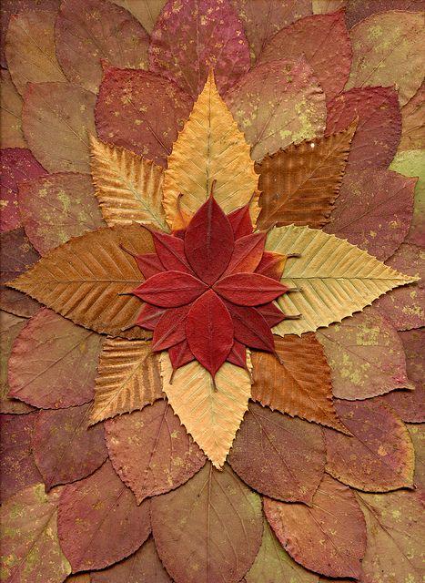 Composition d'automne# avec des feuilles# en maternelle@. A réaliser à l'extérieur façon land art ou sur feuille pour une permanence de l'oeuvre créée. PSIC#