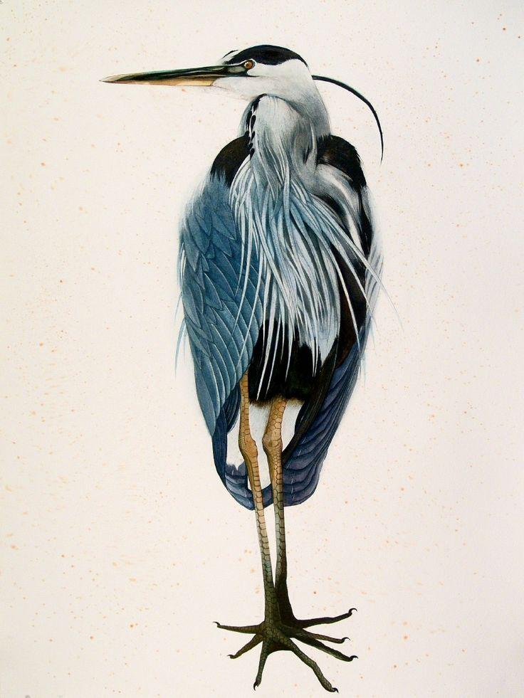 "scottkelleystudio:    Rosebud, 2005. Watercolor and gouache on paper, 40"" x 30"""