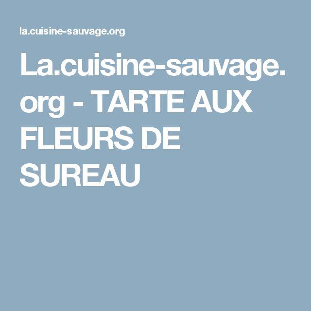 La.cuisine-sauvage.org - TARTE AUX FLEURS DE SUREAU
