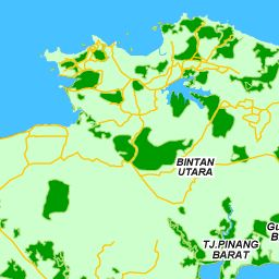 Peta Batam : Peta Jalan & Satellite Batam - Indonesia