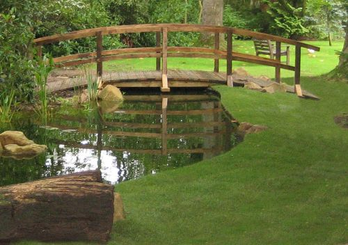 10 images about coy ponds on pinterest dovers natural for Self sustaining pool