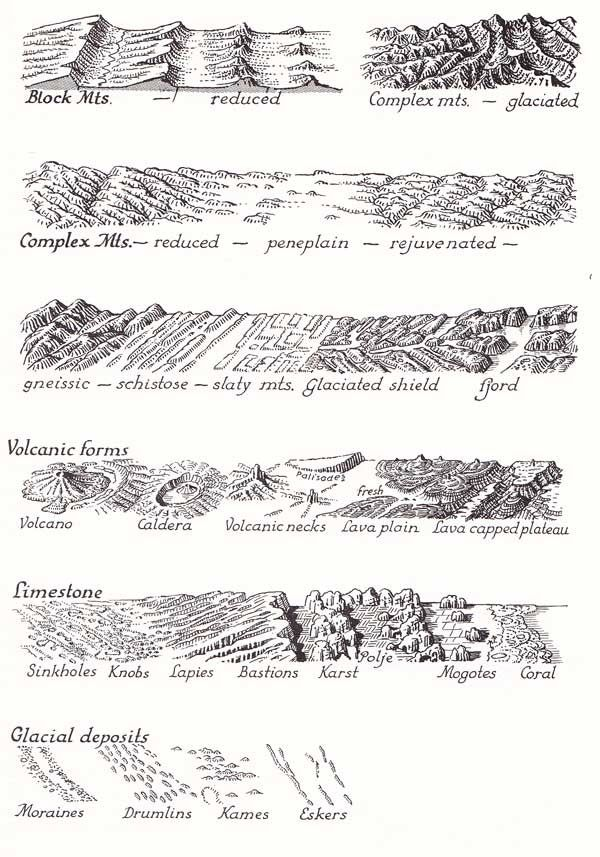 how to draw trees on a fantasy map