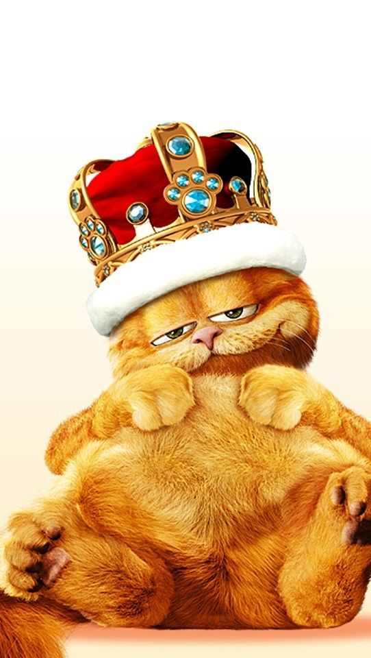 188 best images about garfield on pinterest cats - Garfield wallpapers for mobile ...