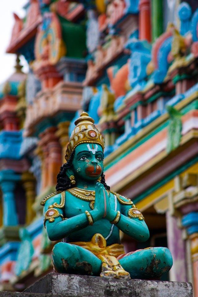 Hanuman é um deus-macaco do hinduísmo. Na comunidade hindu ele é cultuado como encarnação de Shiva, e reverenciado por sua devoção a Rama. Na astrologia Hindú é dito que a meditação sobre o nome ou a figura de Hanuman afasta os malefícios trazidos por Shani (Saturno).