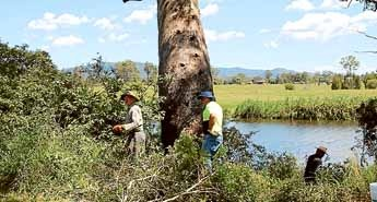 AFTER 18 months of improving the Myall River Camping Area, the Lions Club of Bulahdelah has put forward a proposal to re-name the reserve Lions Park Bulahdelah.