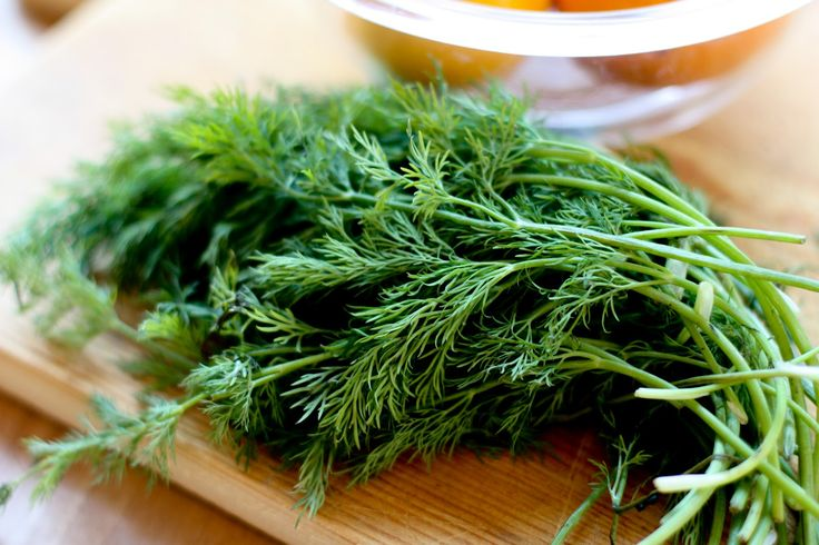 Dill flavored/scented anything