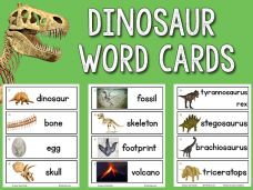 FREE Picture word cards for a large range of subjects in 2 sizes and without words, also.