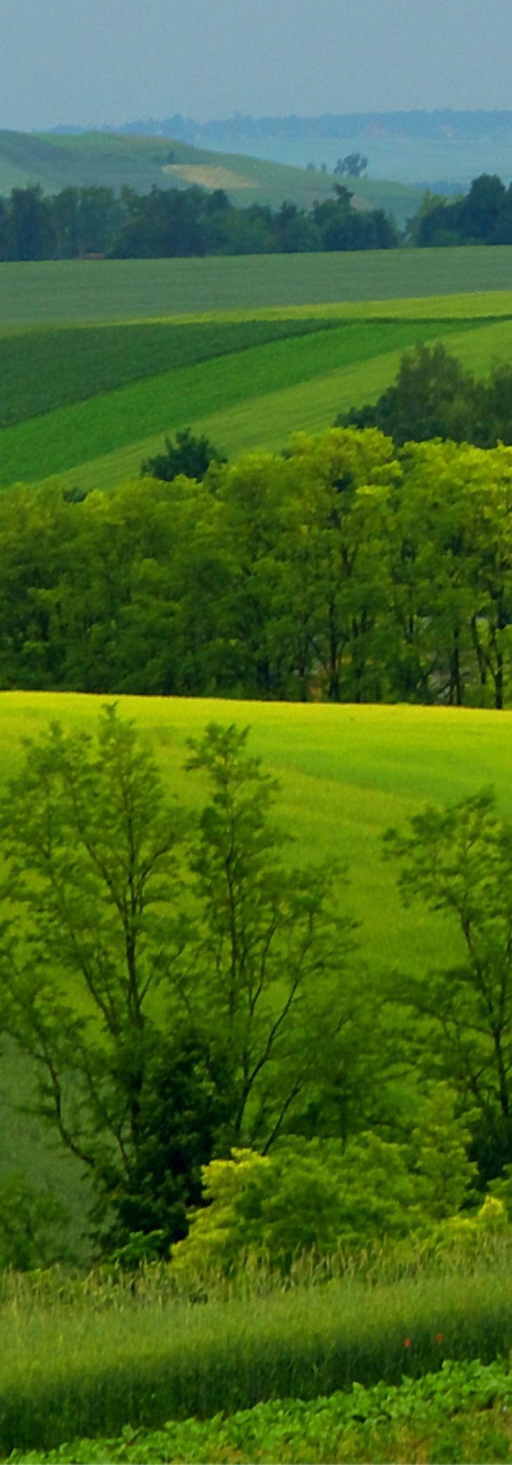 Janikowice, Lesser Poland, Poland